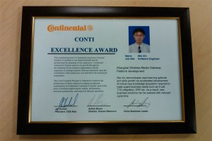 2008 Continental Excellence Award
